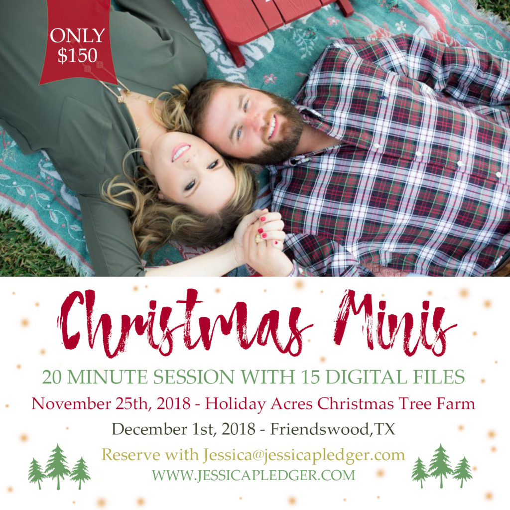 2018 Christmas Holiday Mini Sessions